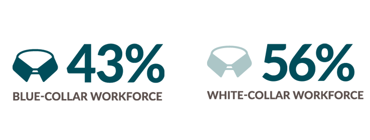 Blue Collar Workforce 43 percent. White collar workforce 56 percent.